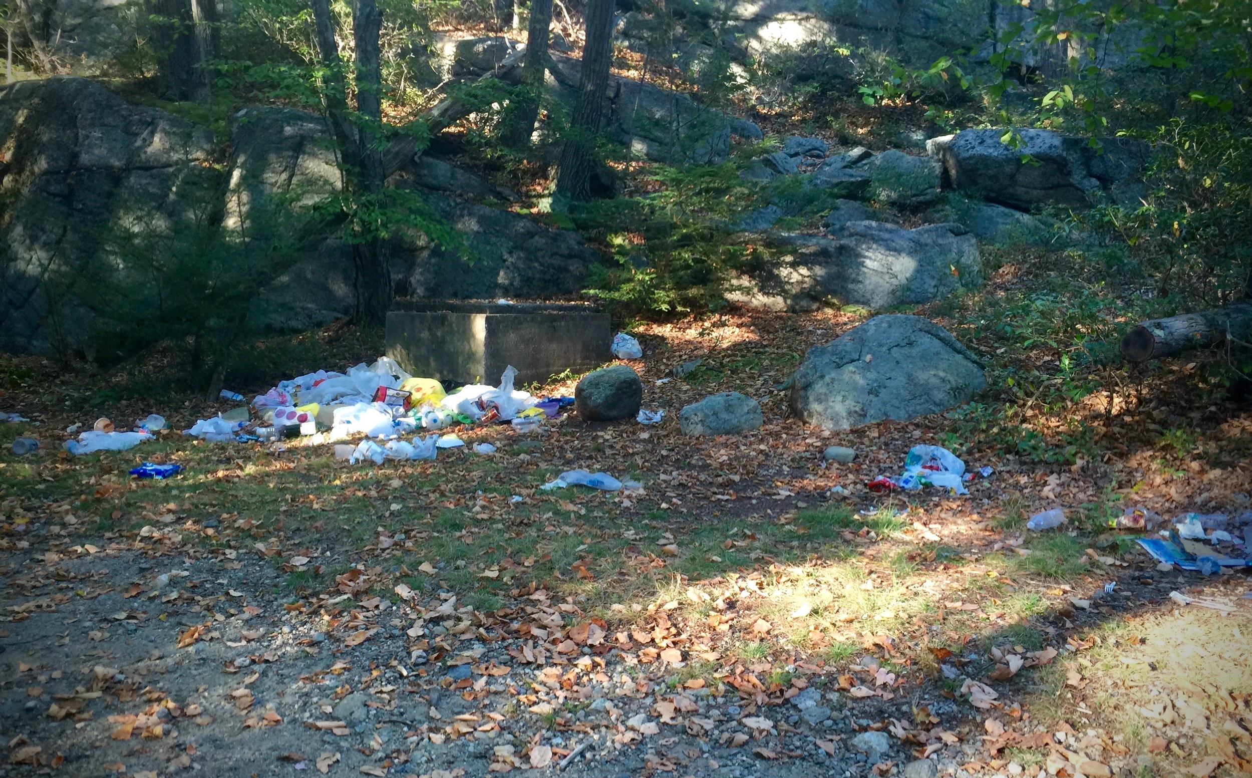 Garbage found near Pine Meadow Lake in Harriman State Park, New York. This accumulated because one person left trash behind and then others followed.