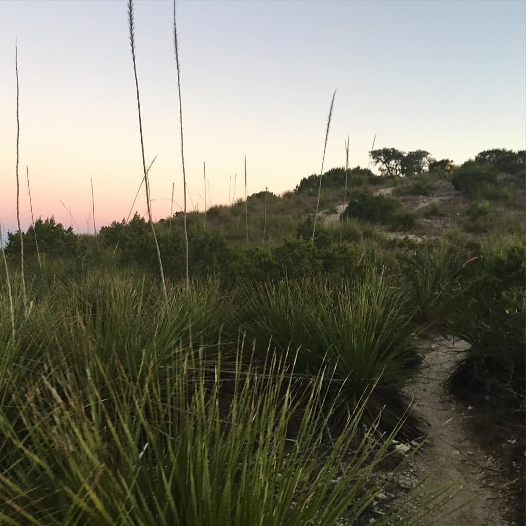 Bandera trail, where everything cuts and stings. Photo: Kali Bird