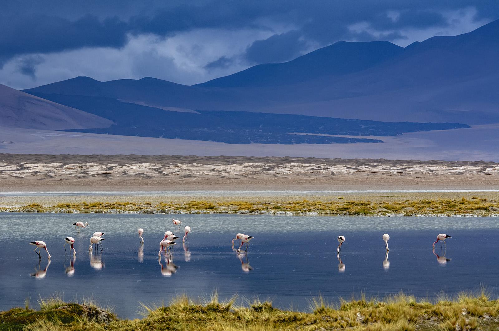 Argentina Northwest 3.jpg
