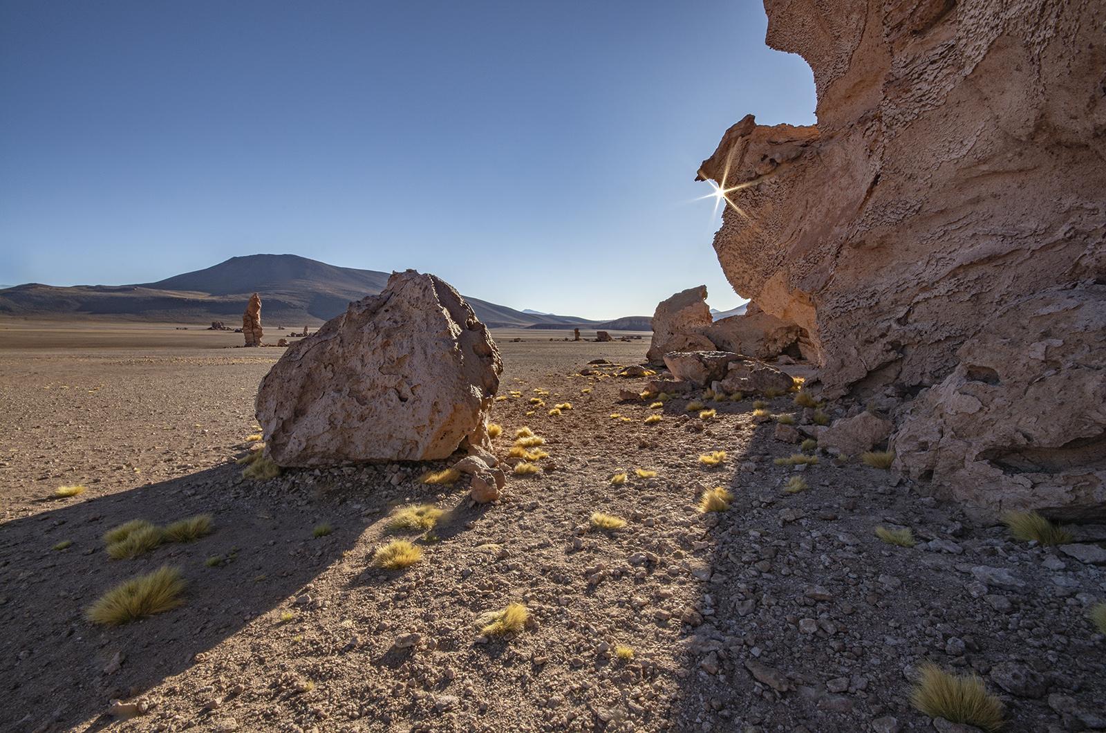 Atacama M71_3809 no logo.jpg
