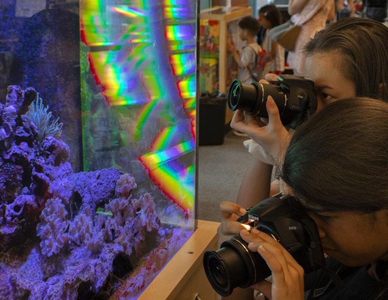 Aquarium 2.0-30992.jpg