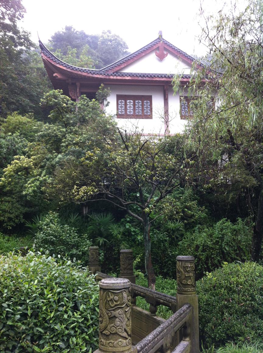 Longjing (Dragon Well) Tea Garden