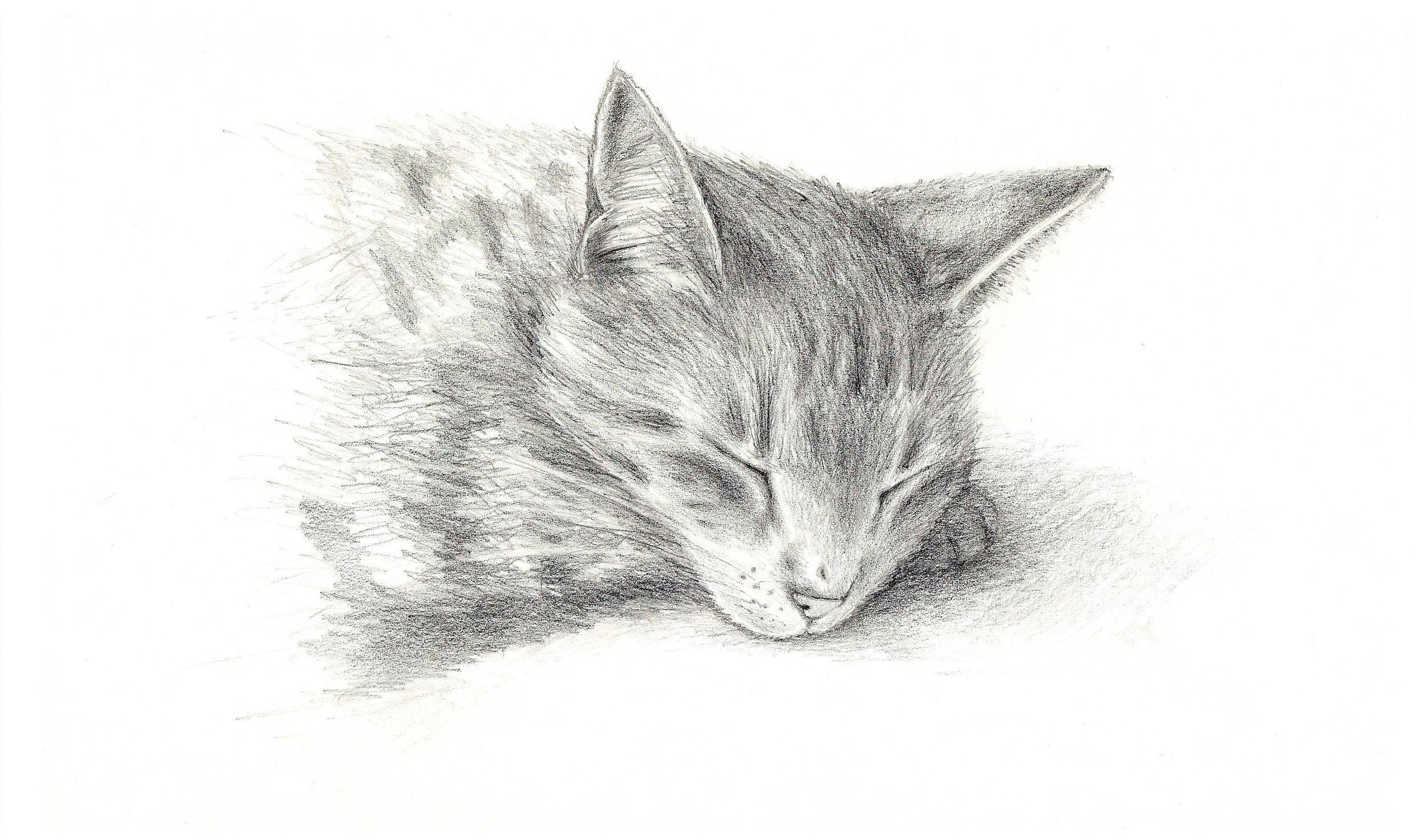 Sketch Page Scan 1.jpg