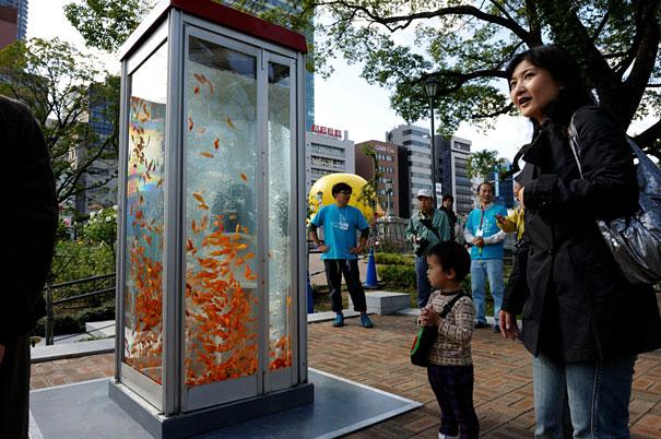 goldfish-phone-booth-tanks-kingyubo-3.jpg