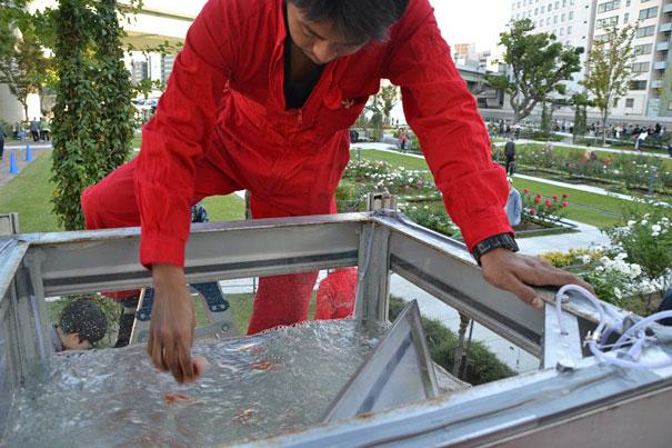 goldfish-phone-booth-tanks-kingyubo-7.jpg