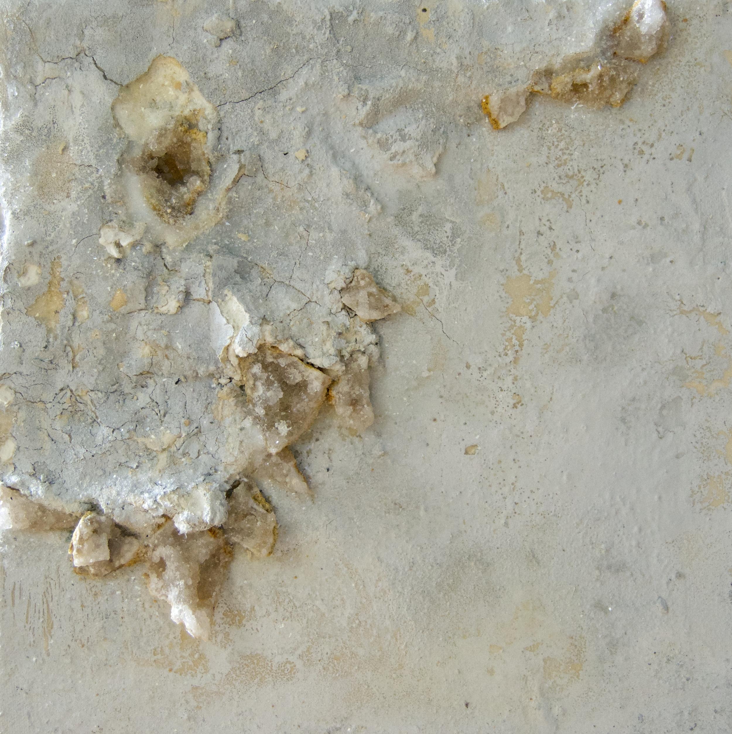 Salt of the Earth - Sarah Raskey Fine Art