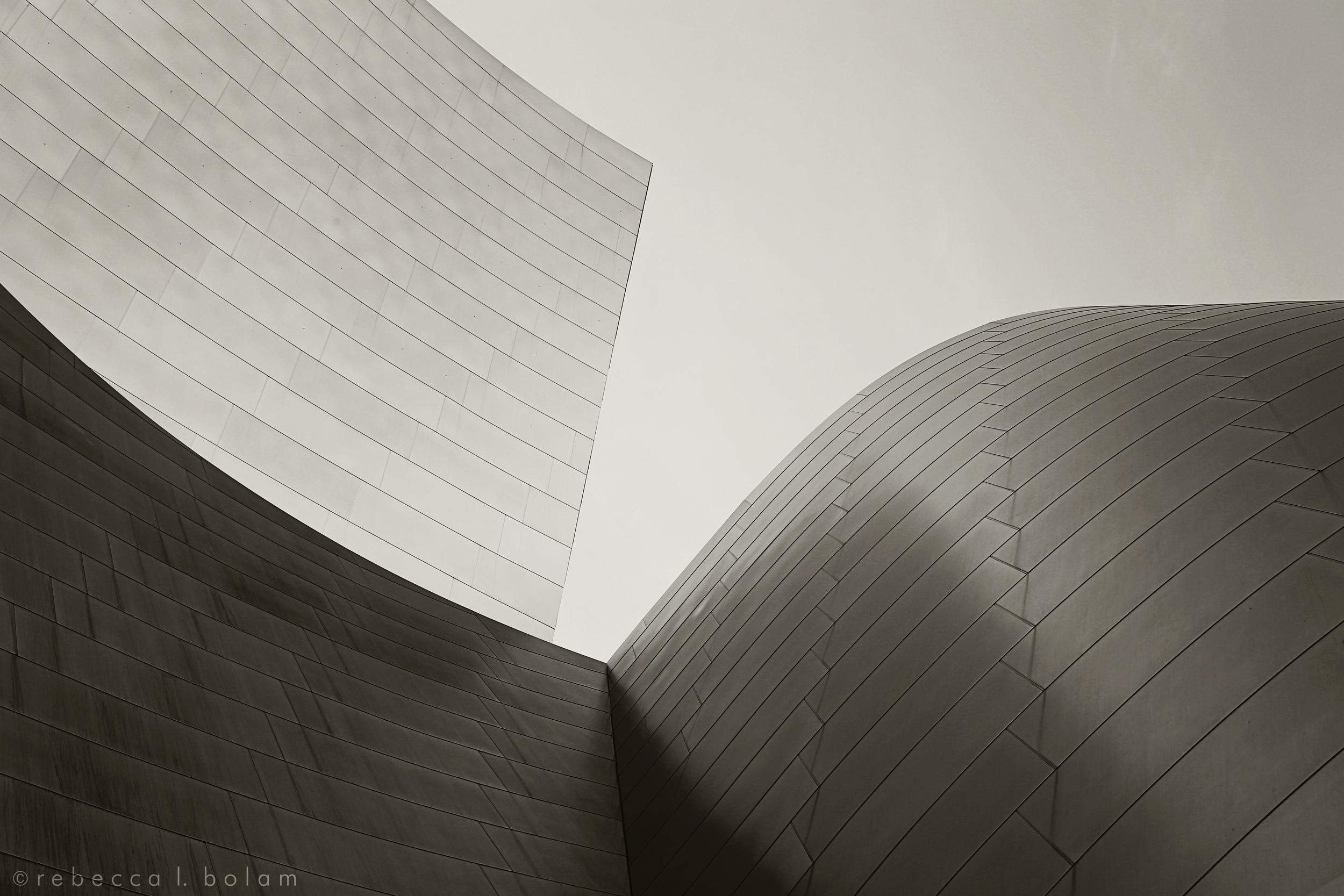 Grey Gehry Curves.jpg