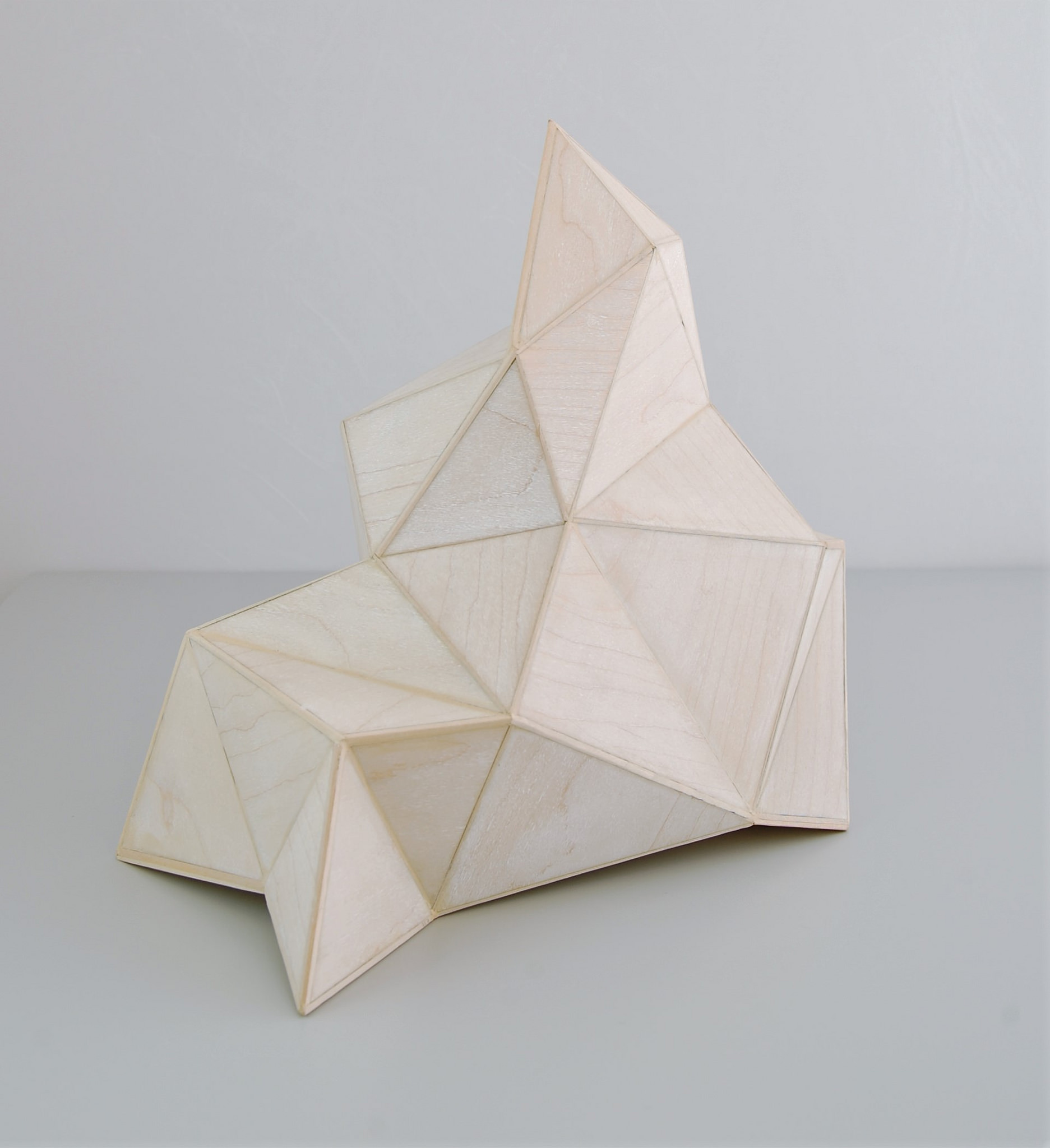 "Tom Lauerman ""Wrapped Monument"""