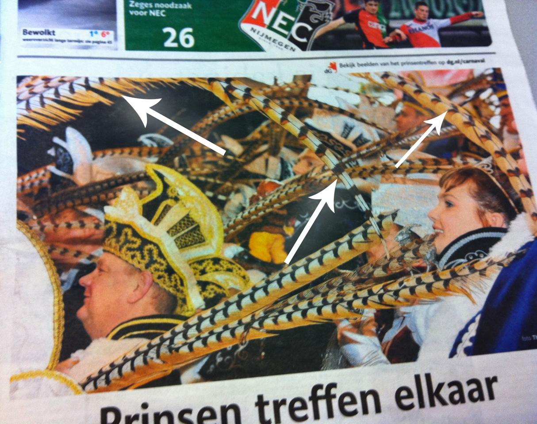 Voorpagina de Gelderlander maandag 28 februari. Prinsentreffen met heel mooi daarop Prins Herman de Eerste.   De oplettende kijker ziet ook meteen de veren van Prins Willem punt NL.Voor de niet oplettende kijker zijn ze via de pijltjes te ontdekken.