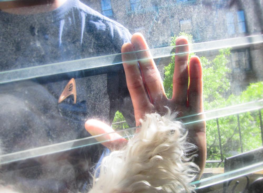 star-trek-vulcan-salute-dog-always-shall-be-friend.jpg