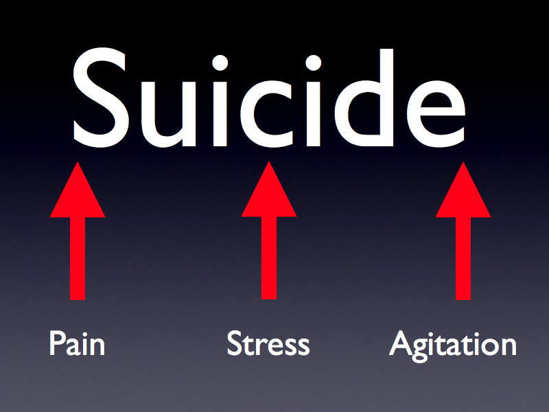 People become at risk for killing themselves when pain, stress, and agitation are all at their maximum.