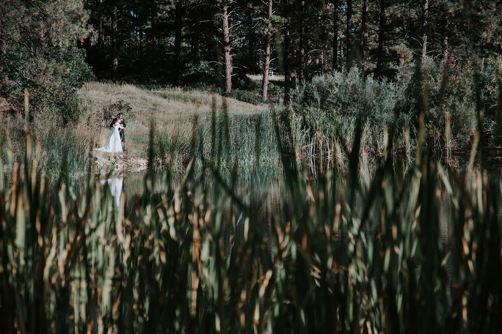 Newlyweds embracing next to pond with tall grasses blurred in foreground