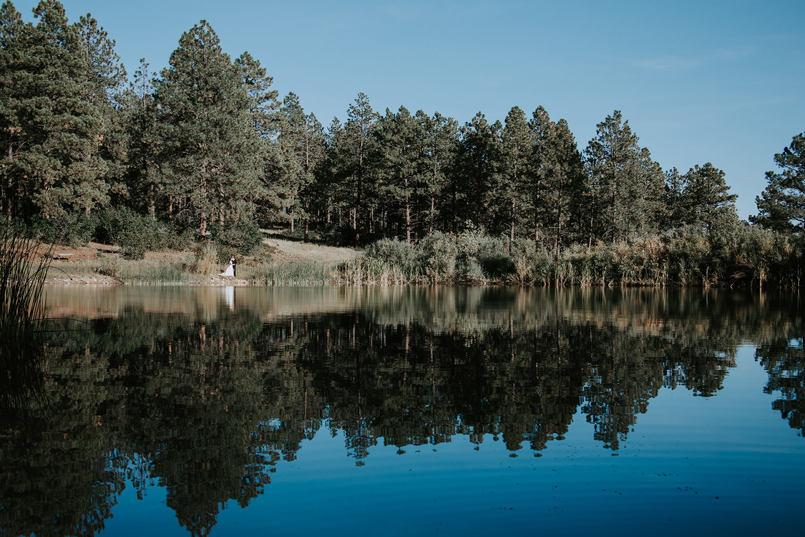 Wide angle of bride and groom next to lake with pine trees