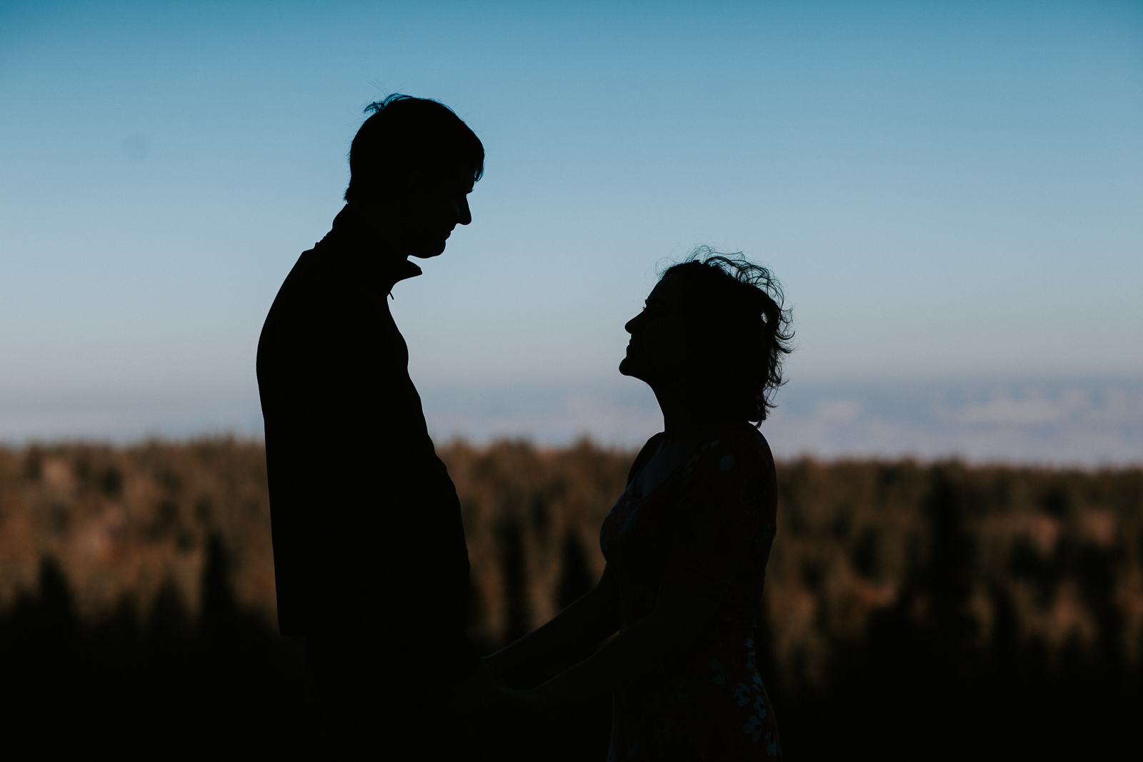 Silhouette of loving couple with sky and trees behind them