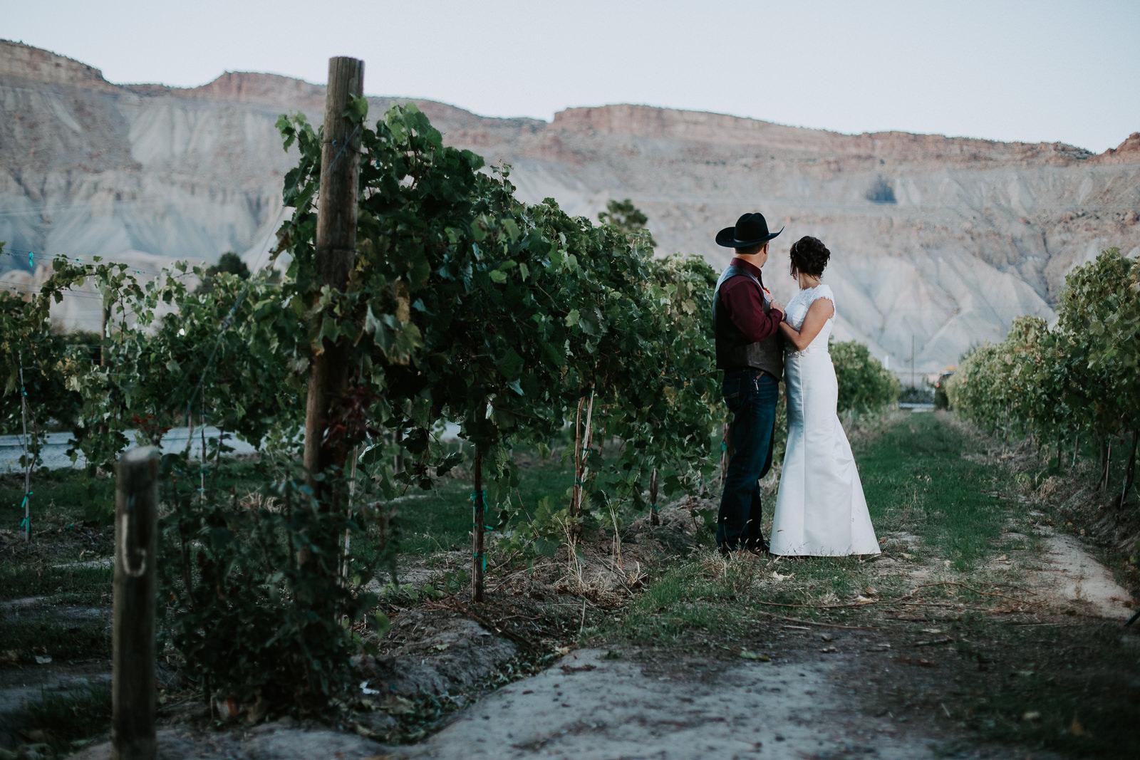 bride groom portrait wedding Palisade Colorado mount garfield bookcliffs