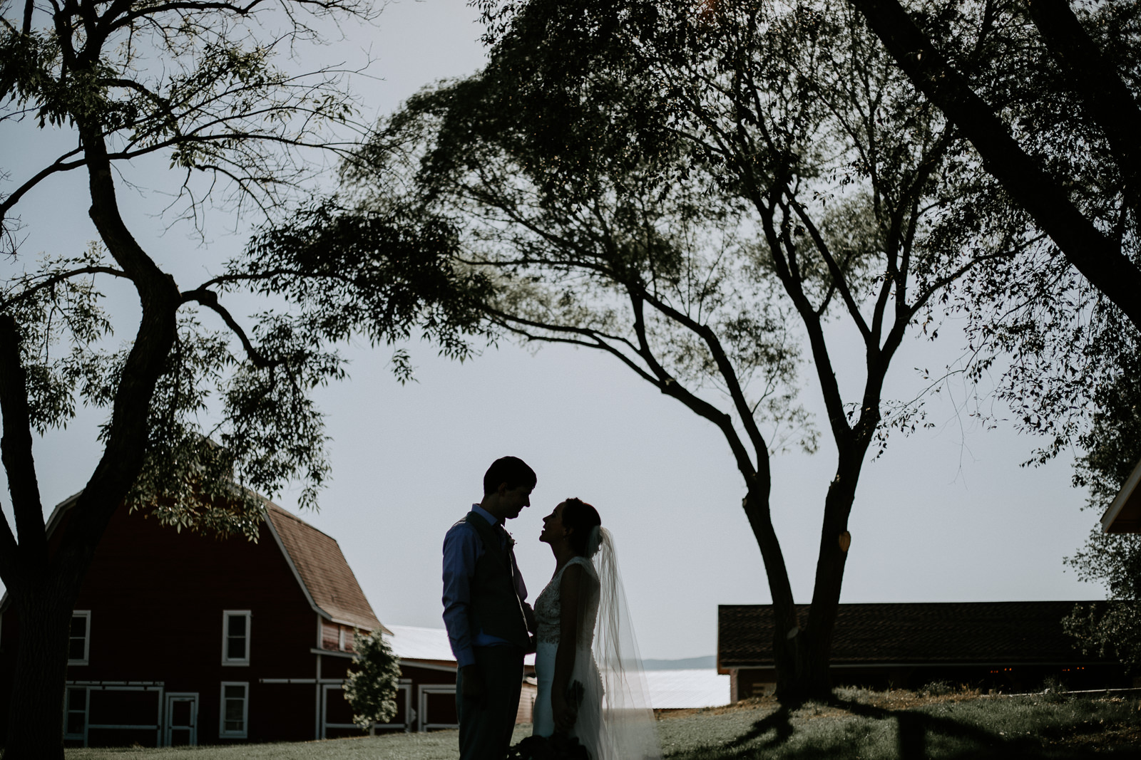 Bride and groom silhoutte with red barn and trees