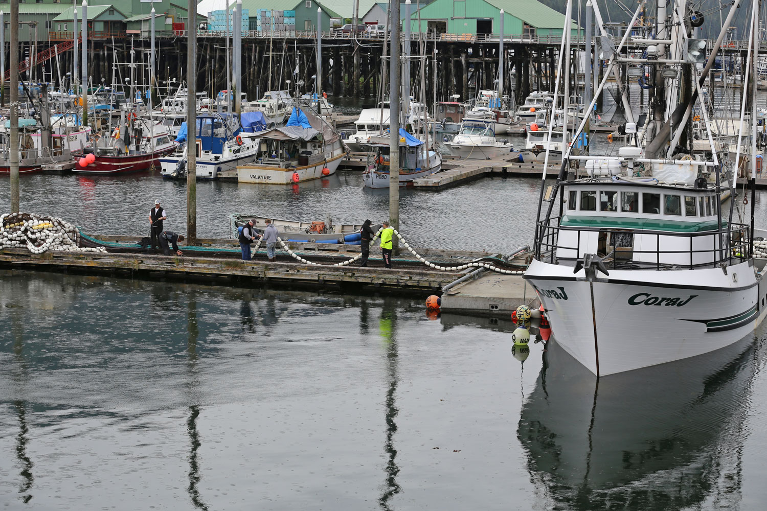 The crew of the Cora J ignores the rain and keeps working on the net.
