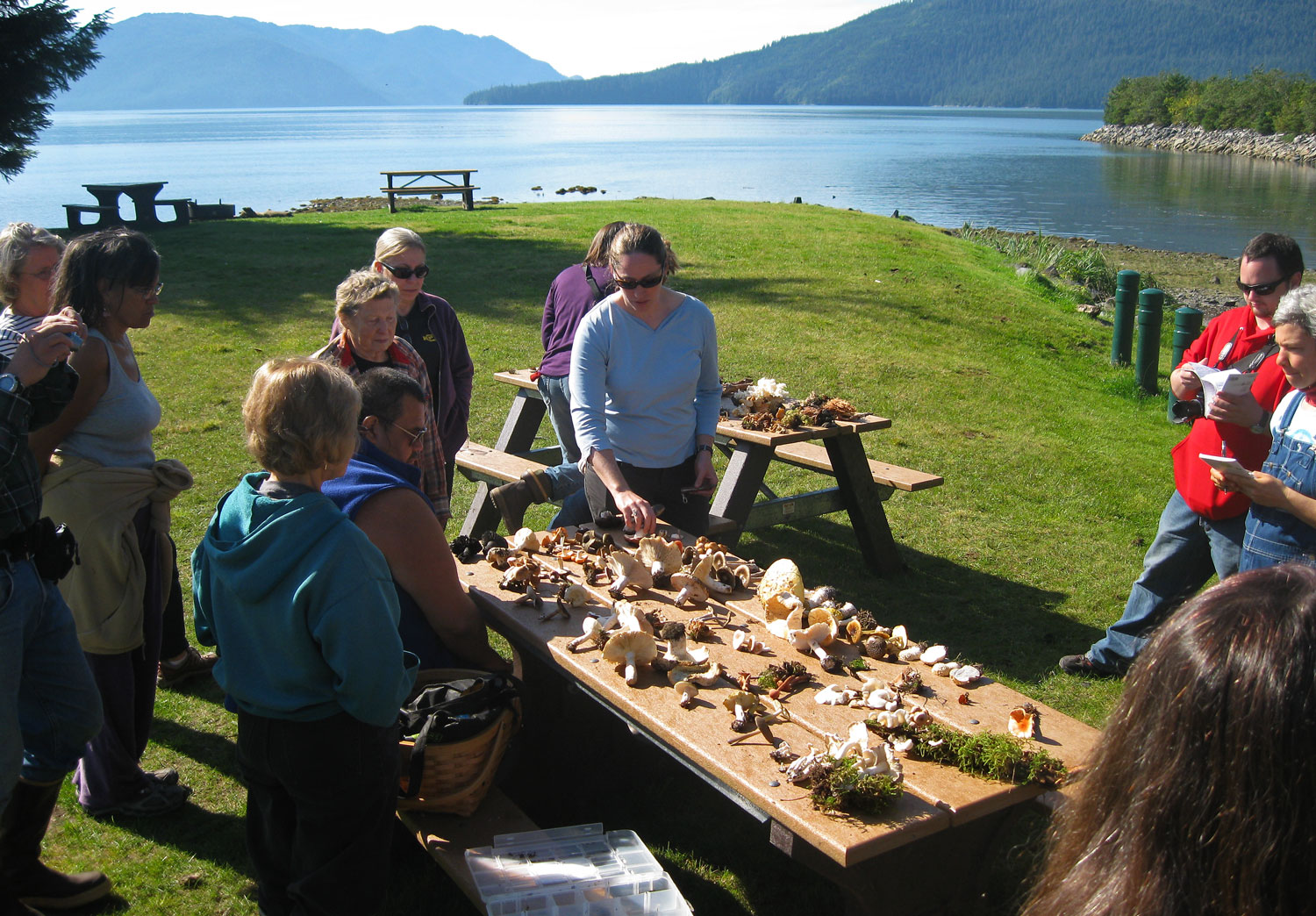 Kate Mohatt, mycologist and Chugach National Forest ecologist, looking over a table of mushrooms with workshop participants.