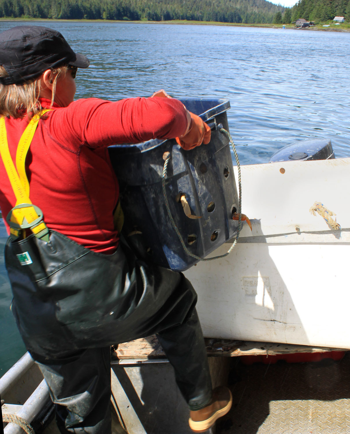 Putting crab into a tote to be winched up to the seafood processor.