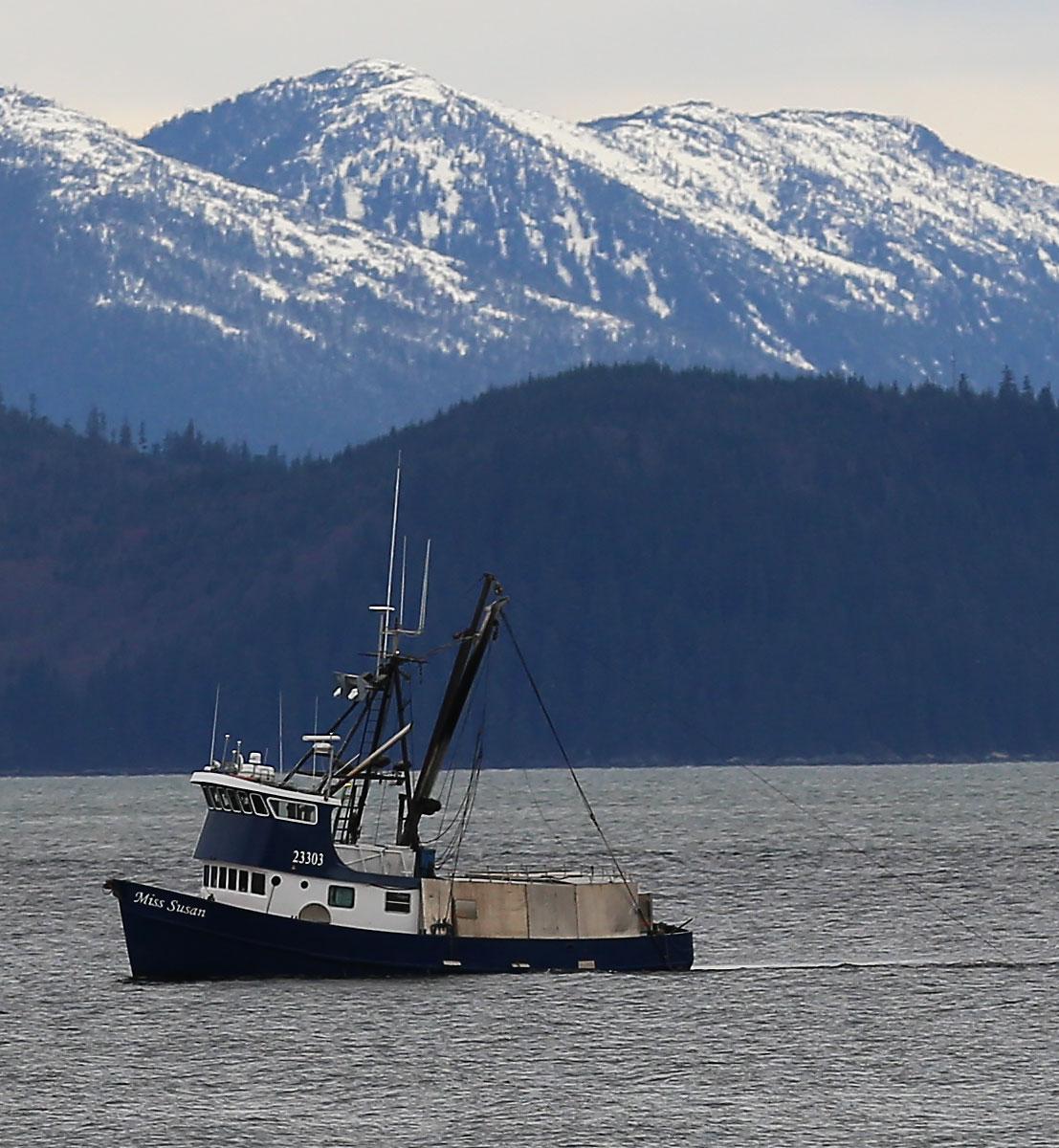 Shrimp_Miss_Susan_trawler_fishing_shrimping_8646.jpg