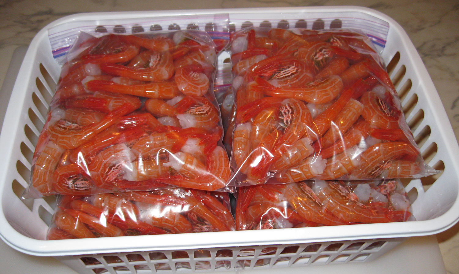Bags of sidestripe shrimp tails ready to go into the freezer.