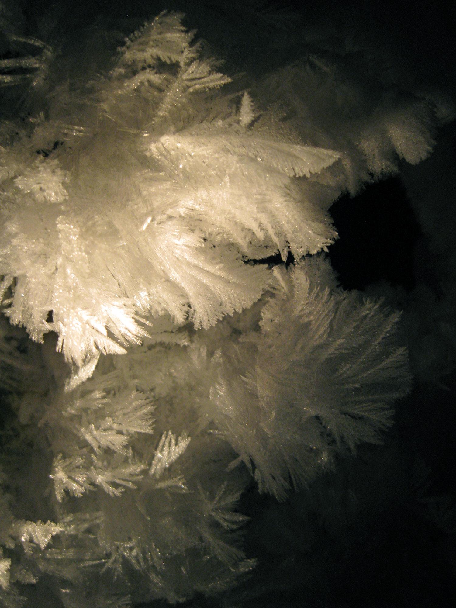 Graceful frost sculptures