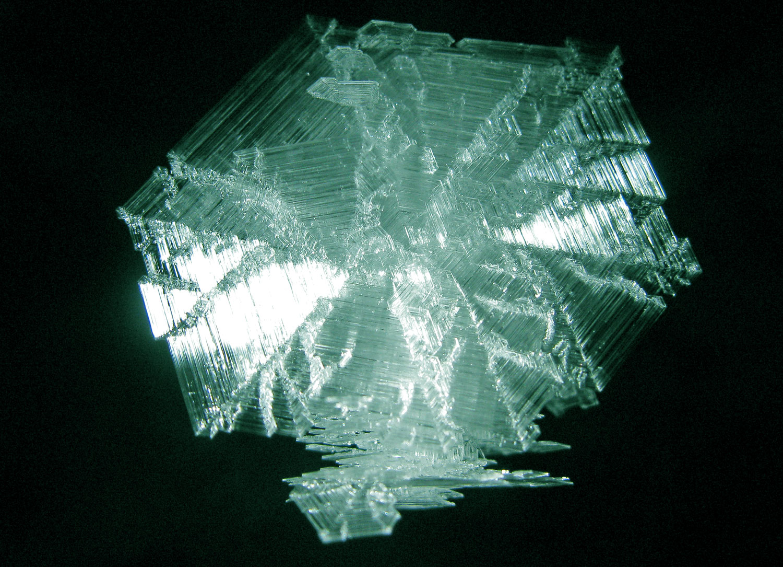 Frost crystal emerald hoarfrost Southeast Alaska