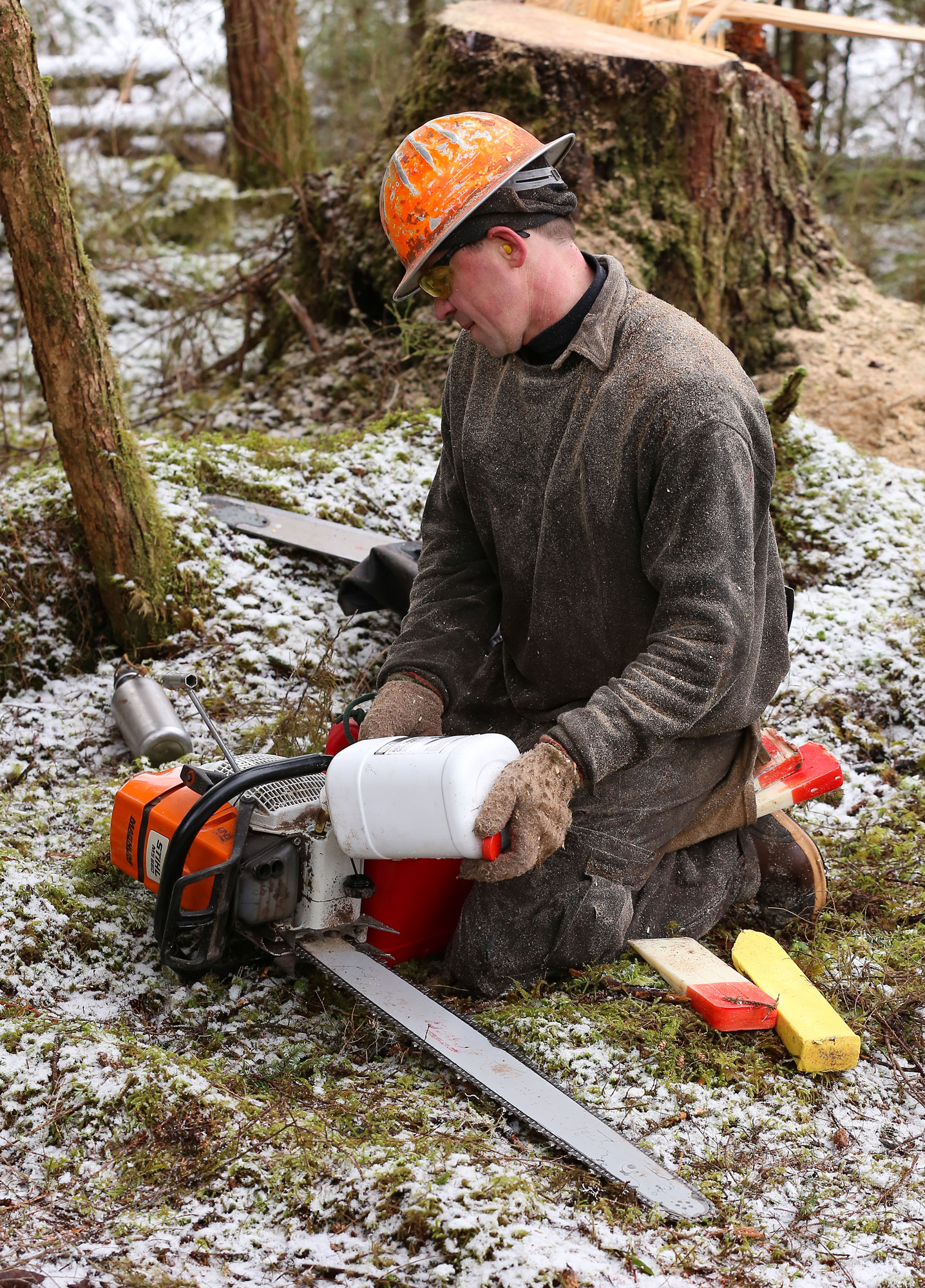 Adding bar oil to the chainsaw.