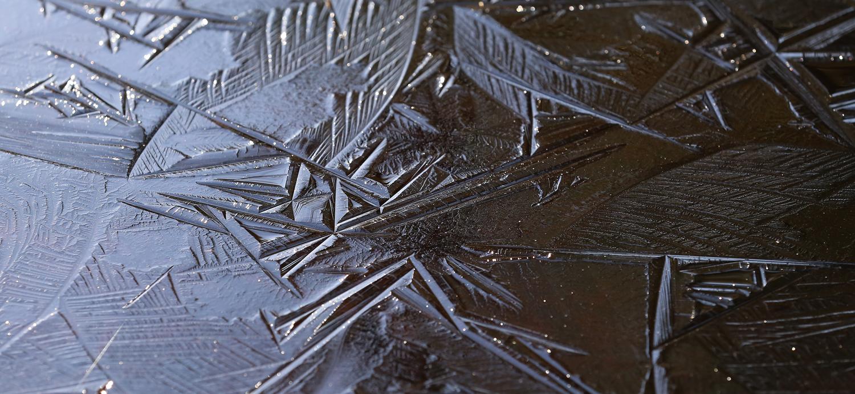 Ice rutile rutilated tanin forest
