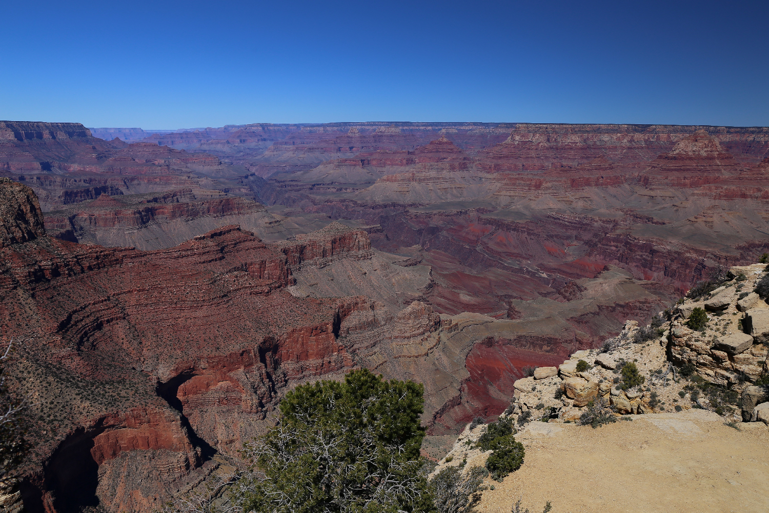 The Grand Canyon from the south rim.