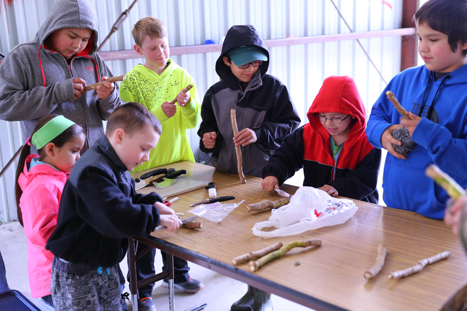 The Hollis students dove right into this project! They are scraping the outer bark off of devil's club sticks, and will peel the inner bark to use in salve making.
