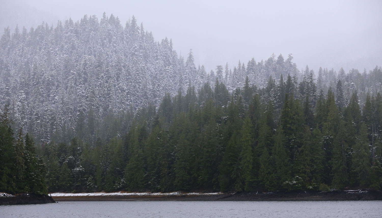 Snow line just above sea level Southeast Alaska