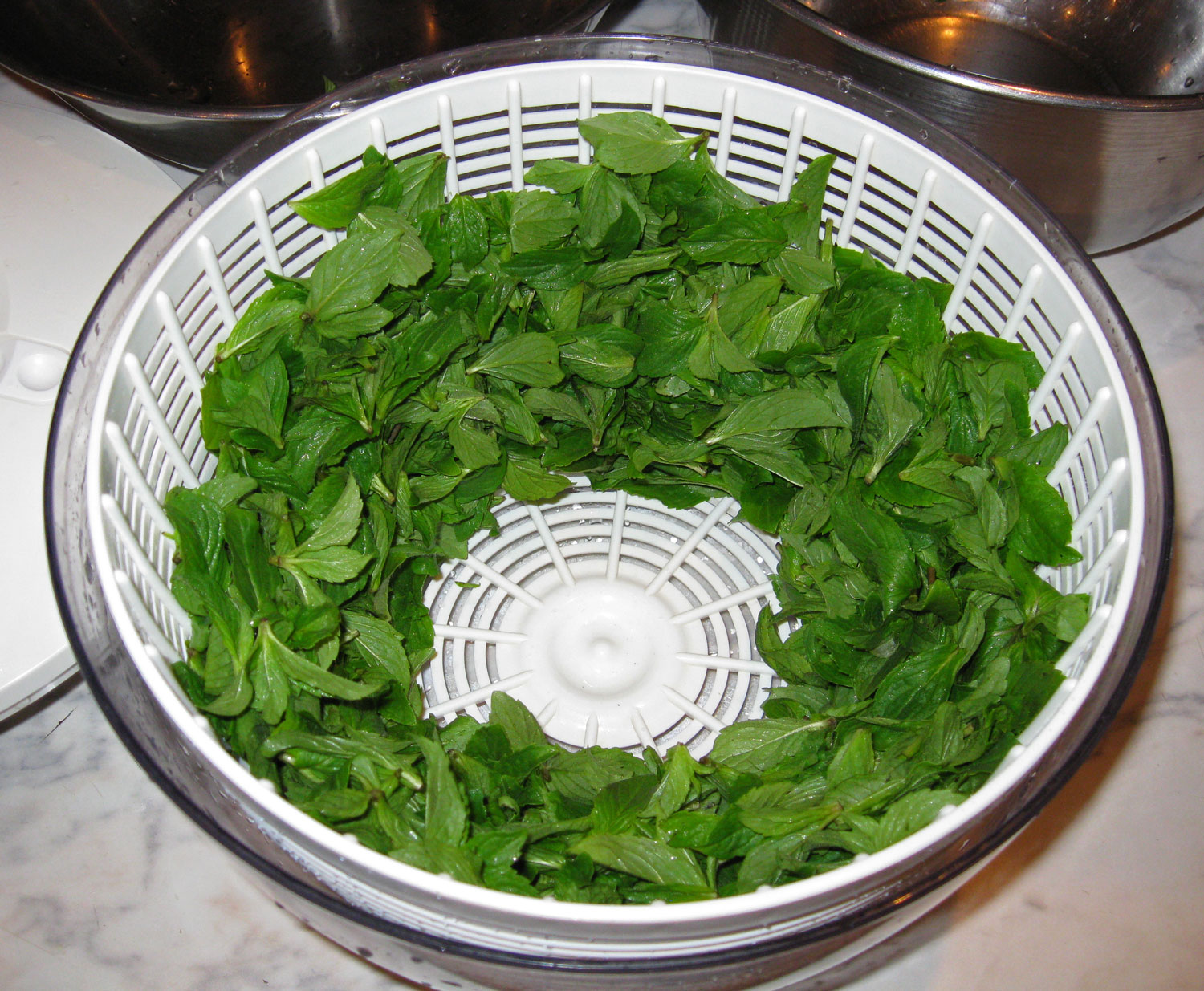 After rinsing the bowl and spinning the leaves they are ready to go on the dehydrator racks.