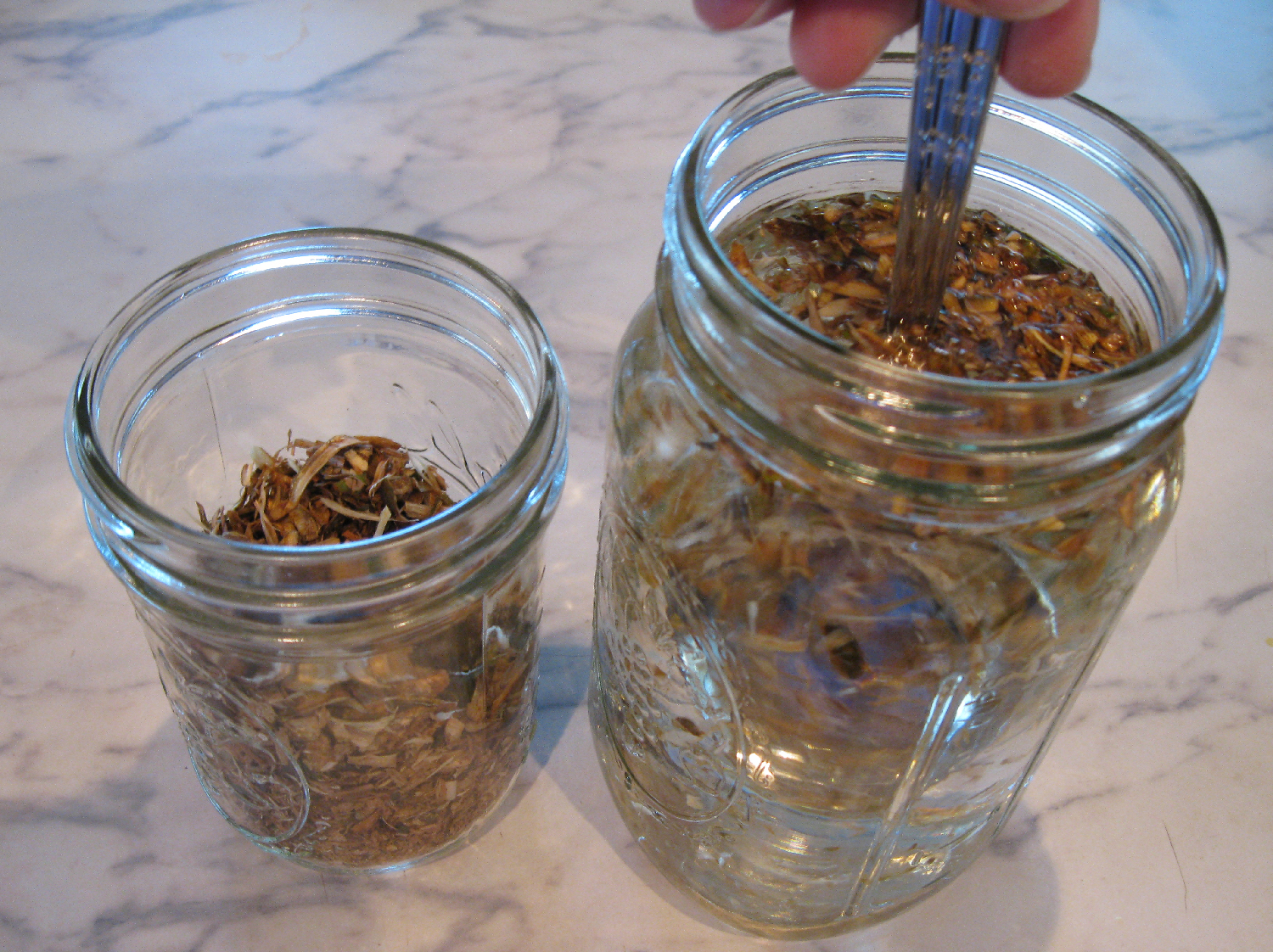 Devil's club dried inner root bark sun tea
