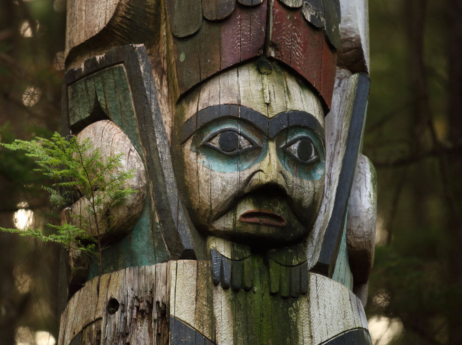 Some of the totems in the park are showing signs of age. New totems are being carved at the carving shed in Kasaan.