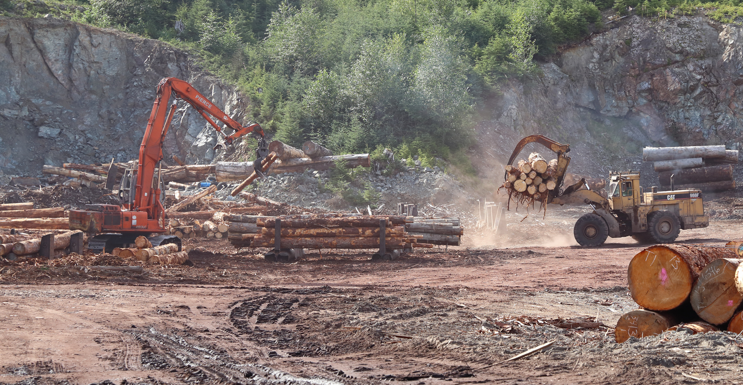 Logging sort yard with log shovel and loader on Prince of Wales Island in Southeast Alaska