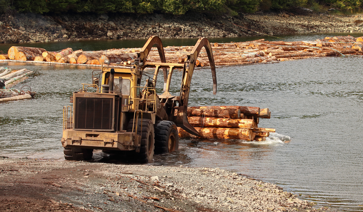 Caterpillar 988F log loader dumping a bundle of logs into the water on Prince of Wales Island in Southeast Alaska