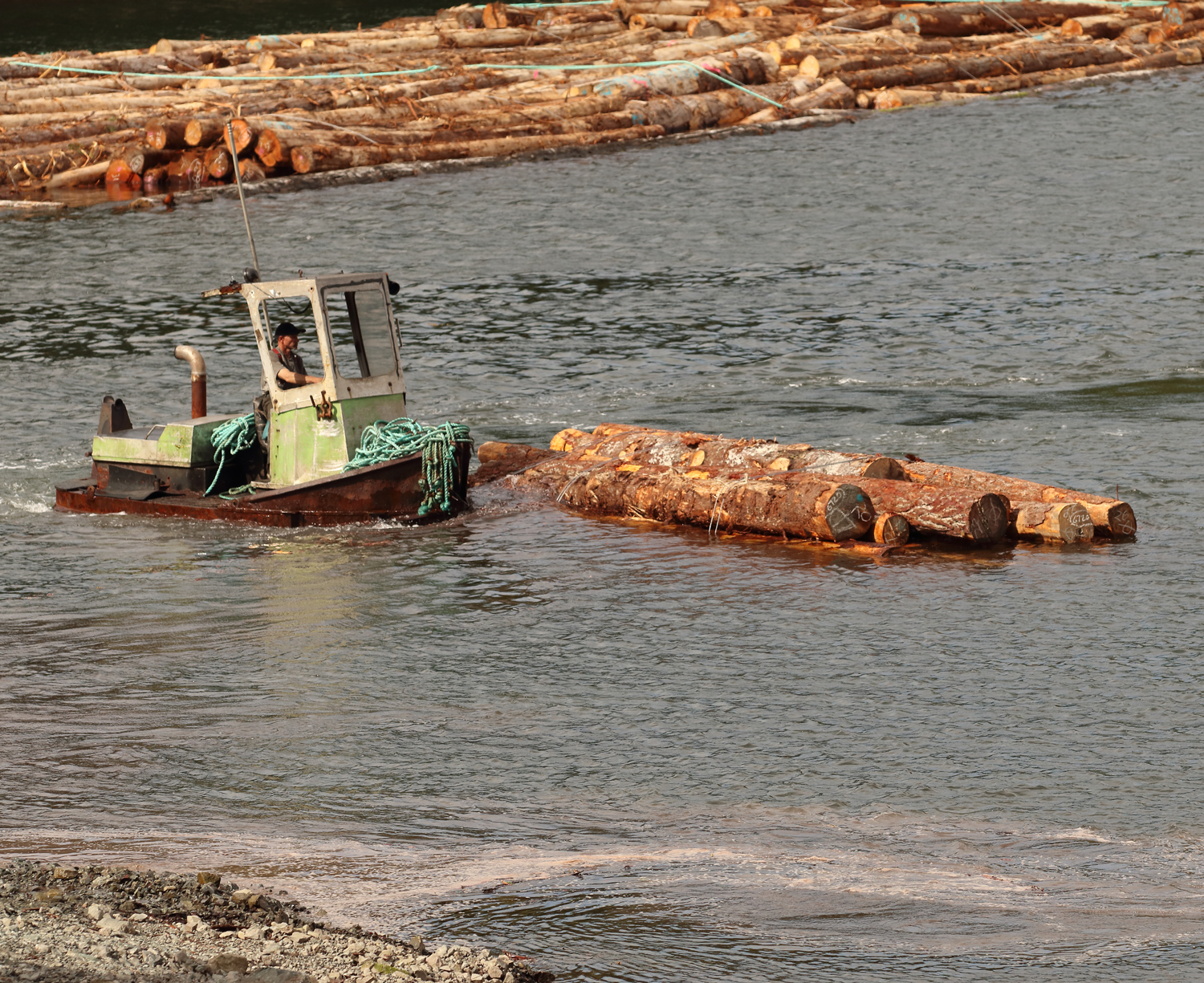 Boom boat taking the logs out to the log raft on Prince of Wales Island in Southeast Alaska