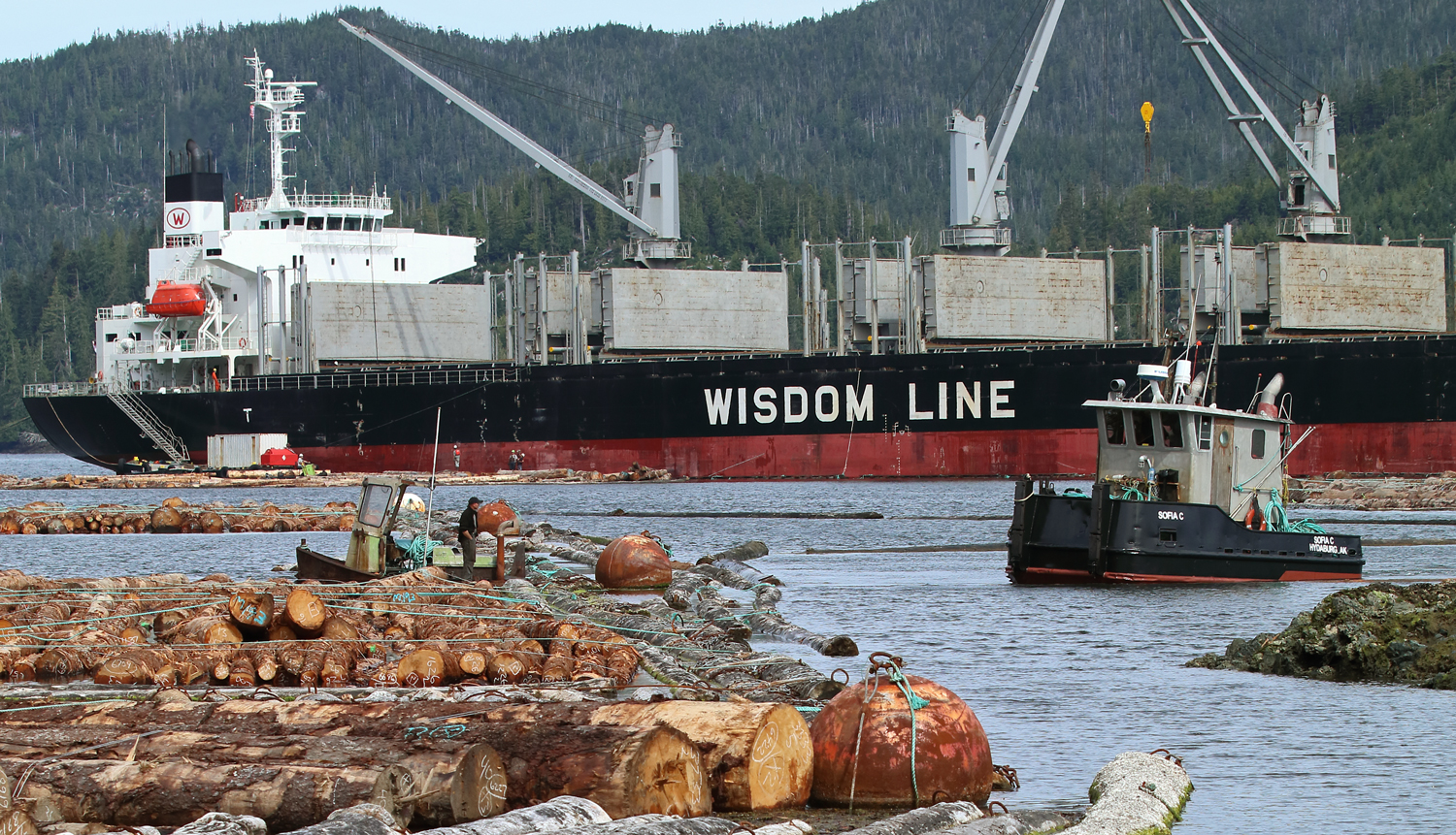 Pusher tug Sophia C assisting in log loading near Prince of Wales Island in Southeast Alaska
