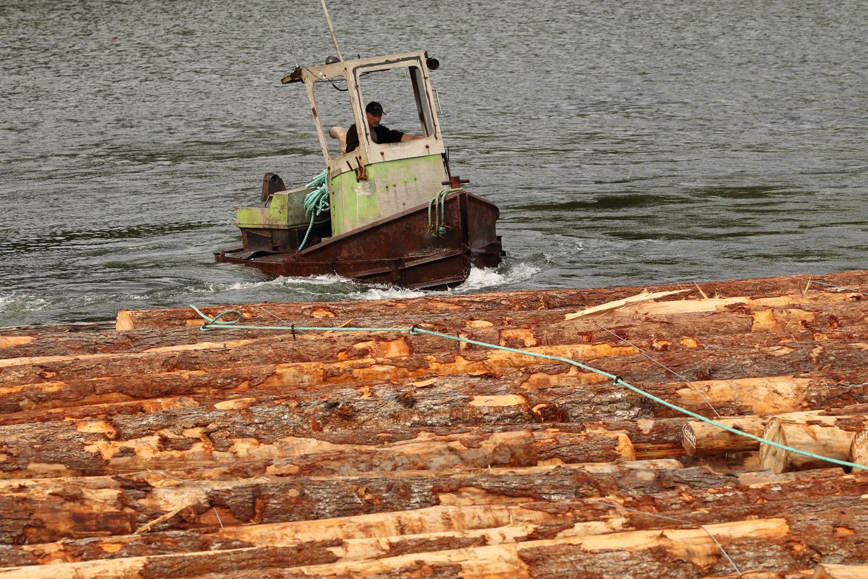 Log bronc sidewinder boom boat log raft Prince of Wales Island Southeast Alaska