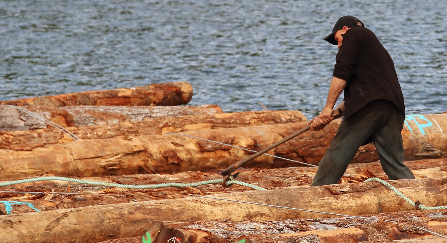 Boom man knocking log dog out of log bundle with an ax near Prince of Wales Island Southeast Alaska
