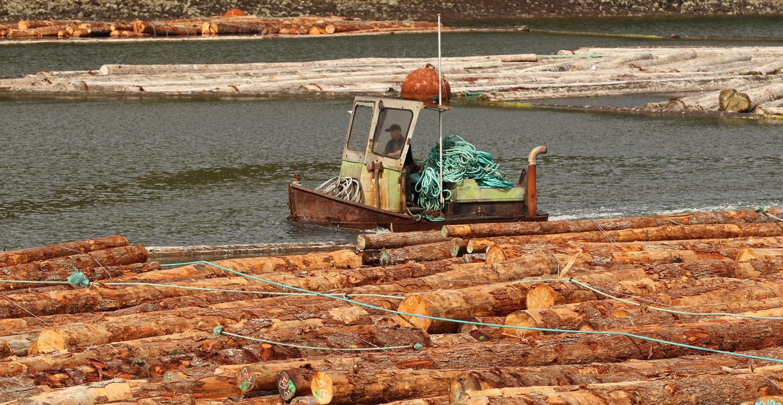 Log bronc boom boat log raft Prince of Wales Island Southeast Alaska