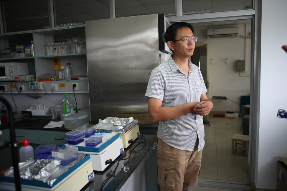 """Image: Professor Zhu gave us a tour of his lab and discussed the benefits of engineering C4 into rice. One way he sees his work is as a kind of deep-time realignment of the of plants with the environment. Most earthly plants evolved when atmospheric conditions were very different, and we can now design a more optimal photosynthesis machine for today's environment. The demand for crop productivity is projected against continuous population growth and changes in diet. """"We need 50% more productivity,"""" he says. This is a promise that has purchase with Bill and Melinda Gates Foundation and other funding agencies. The project is a multinational collaboration developed spanning the last 10 years and funded by both private and state funds."""