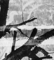 fragment6.jpg