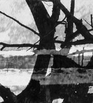 fragment4.jpg