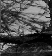 fragment3_1.jpg