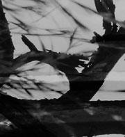 fragment3_2.jpg