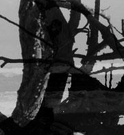 fragment3_4.jpg