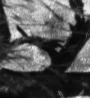 fragment5_2.jpg