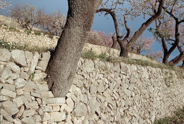 Vall de laguar, Alicante, muros de piedra seca.  © Daniel Belenguer